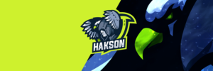 Eagle Gaming Clan Mascot Header